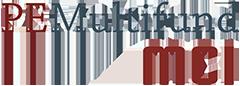 Private Equity Multifund FIZ